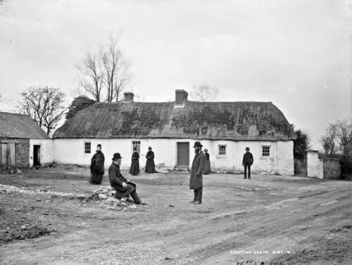 john-and-andrew-foxs-house-after-eviction-clongorey-cokildare